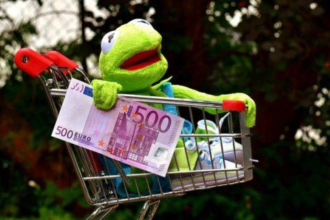Kermit de kikker in winkelwagentje met een nep 500 euro biljet